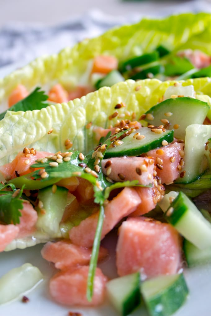salmon ceviche with coriander, cucumber and lettuce