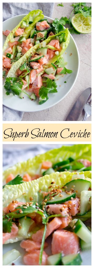 salmon ceviche on a plate