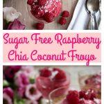 Raspberry Chia Coconut Froyo Pin