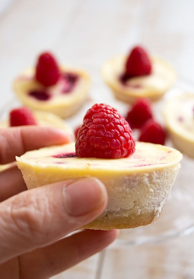 closeup of a low carb raspberry cheesecake held by a hand