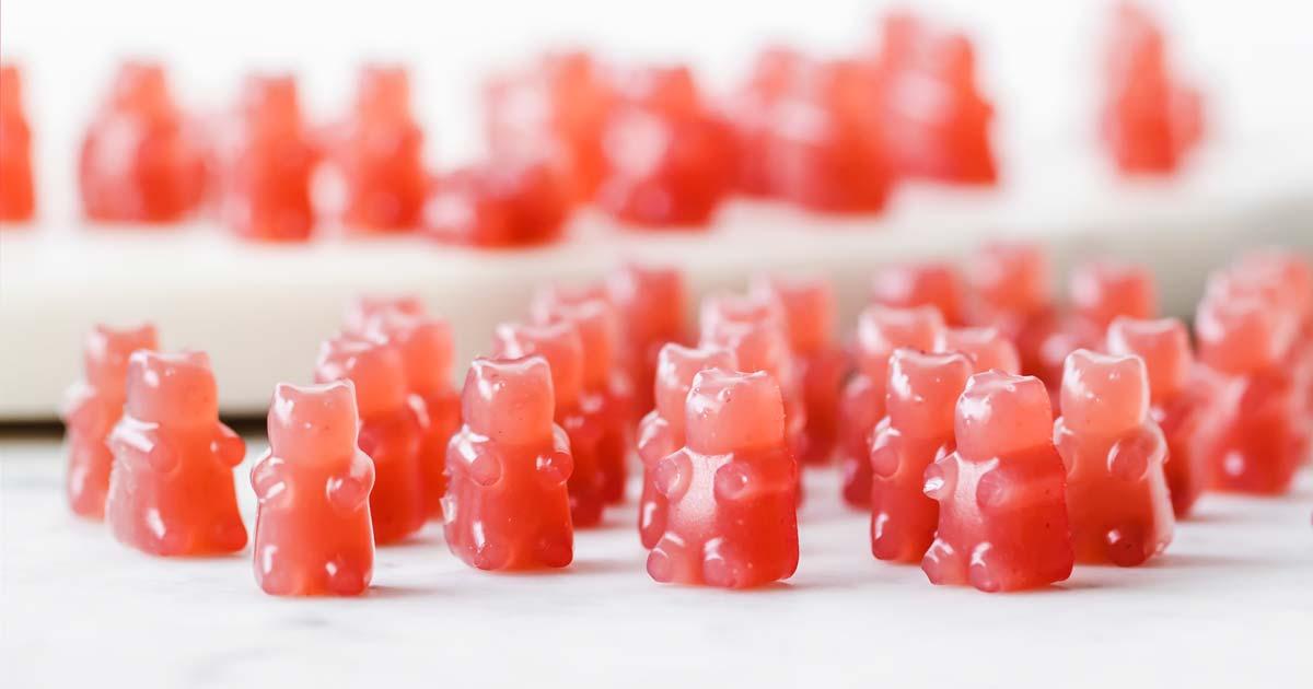 Triple Berry Sugar Free Gummy Bears