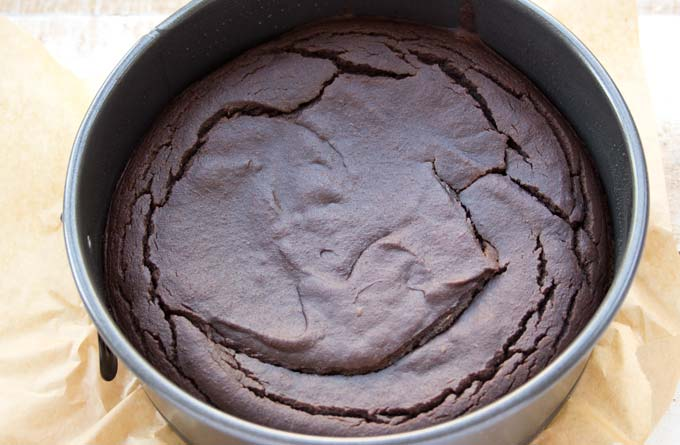 baked cake in a springform