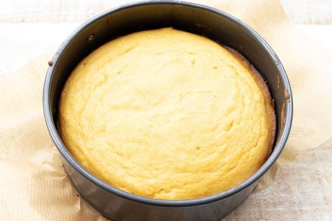 baked coconut flour cake in a springform pan
